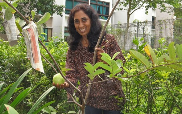Bhavani Prakash - At Community Garden