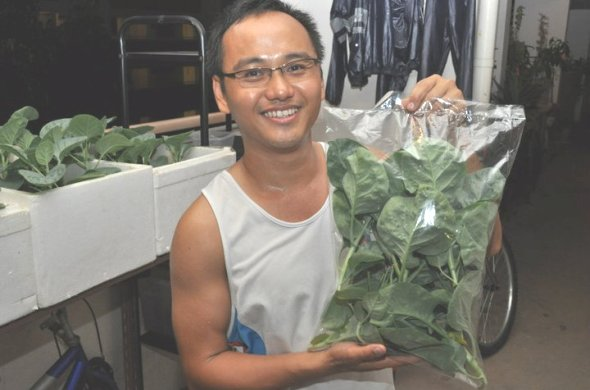 Derrick Ng - Grow Your Own Food