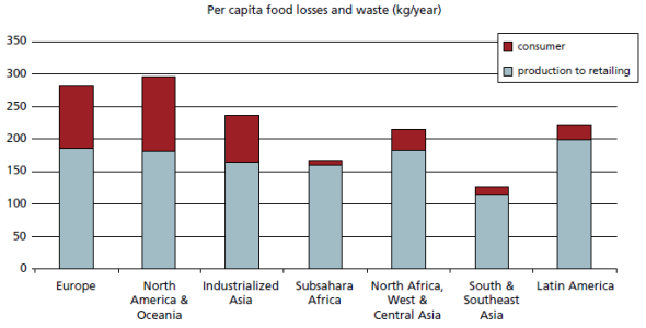 Per capita food losses and waste