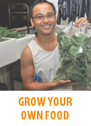 Tips - Grow Your Own Food