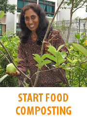 Tips - Start Food Composting